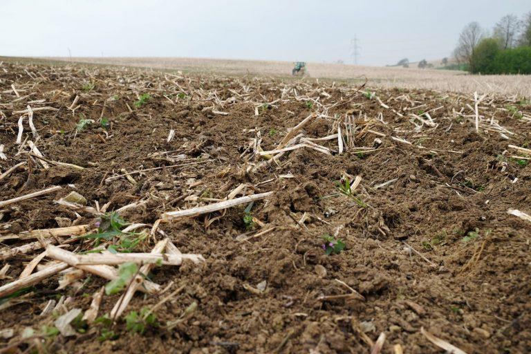 Ackerbau mit frischer Erde