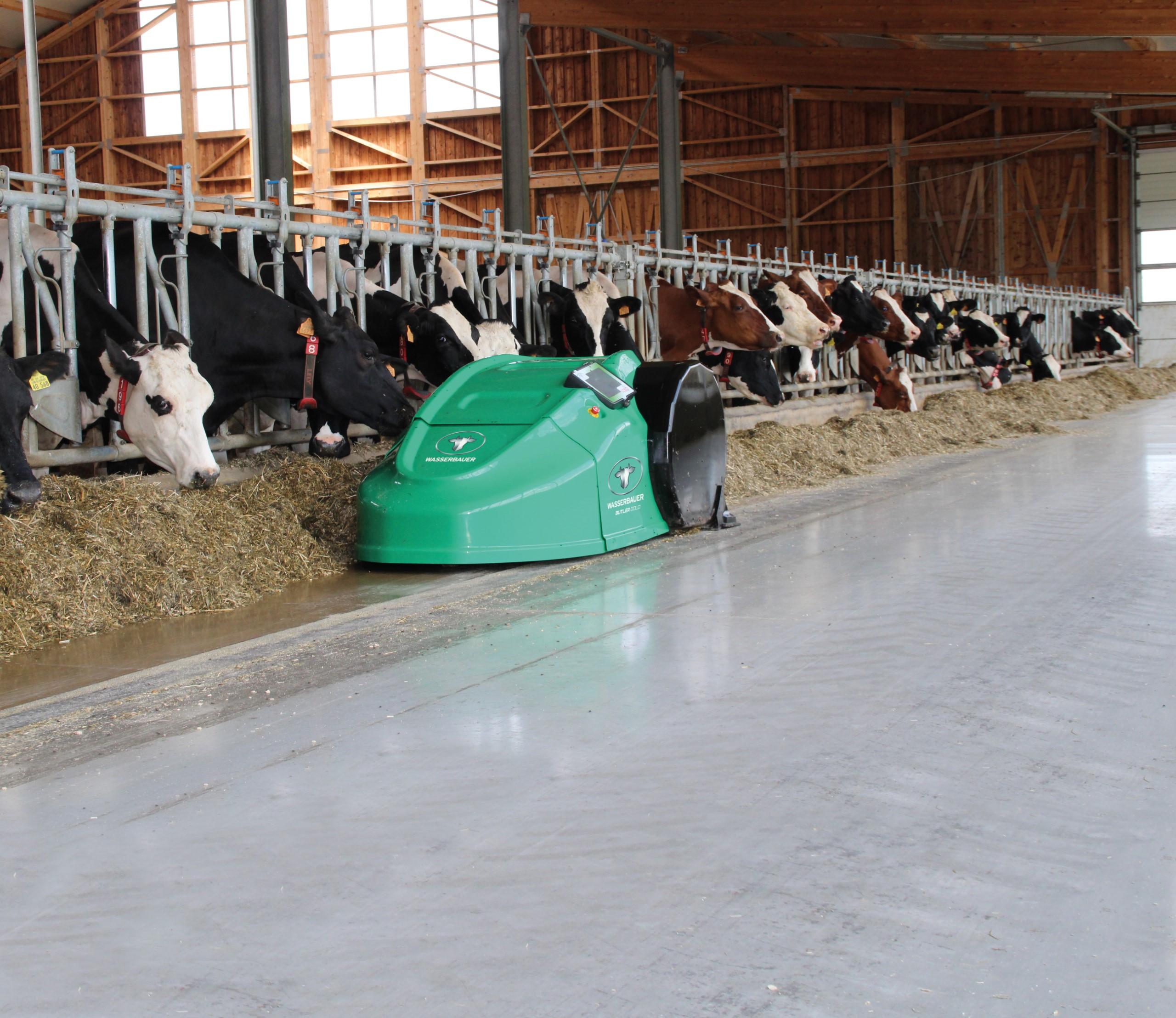 Automatischer Futteranschub mit Wasserbauer ButlerGold bei der Silagefütterung.
