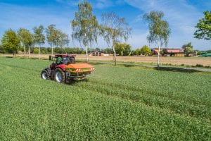 Düngestreuen mit Amazone Düngestreuer und Case IH Traktor.
