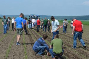 Fortbildung am Innovation Farm Demobetrieb