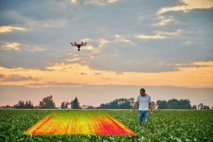 Unkräuter punktuell bekämpfen mit Drohnenaufnahmen.