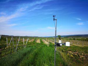 Wetterstation von Pessl Instruments am Feld.
