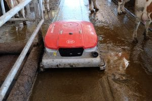 Lely Collector entmistet.